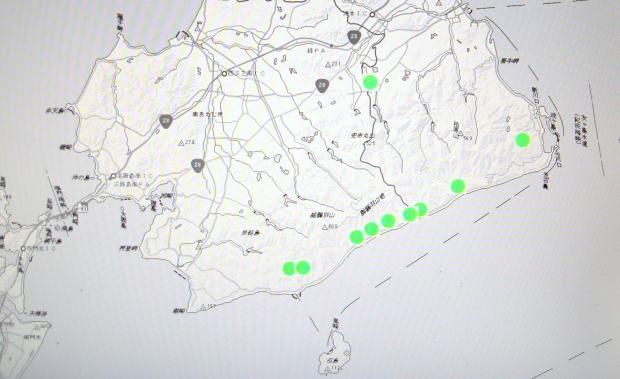 淡路島南部でのシマサルナシの分布