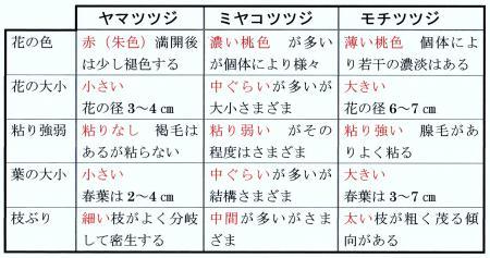 3種の形質表