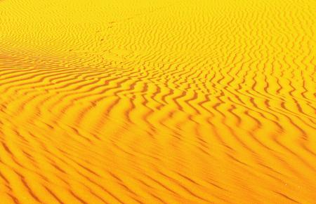 砂漠に生ずる砂紋