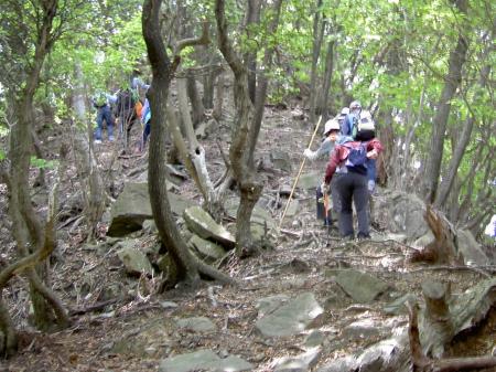 山道を登る参加者一行。