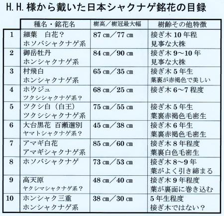 いただいた日本シャクナゲ10鉢の目録