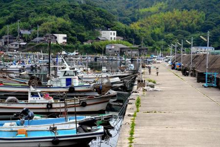 沼島漁港にもやう漁船