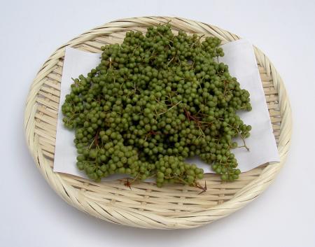 サンショウの実の収穫