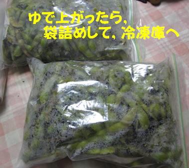 茹でて冷凍保存 (1)