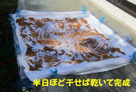 洗いゴマ (1)