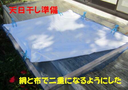 洗いゴマ (3)