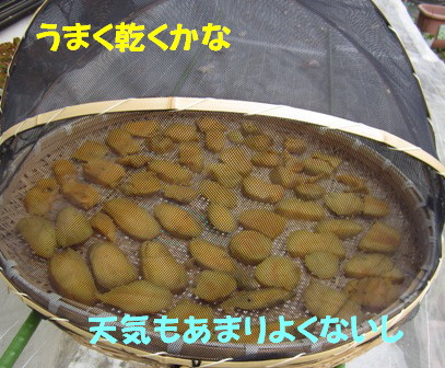 芋切り作り (1)
