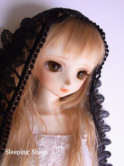RIMG0558-2糖花