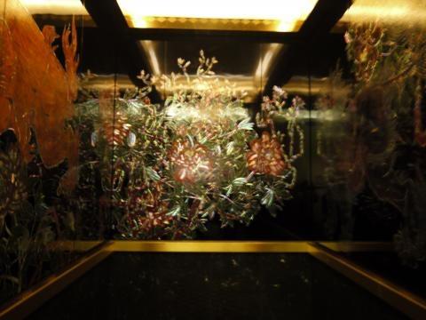 20120503_elevator