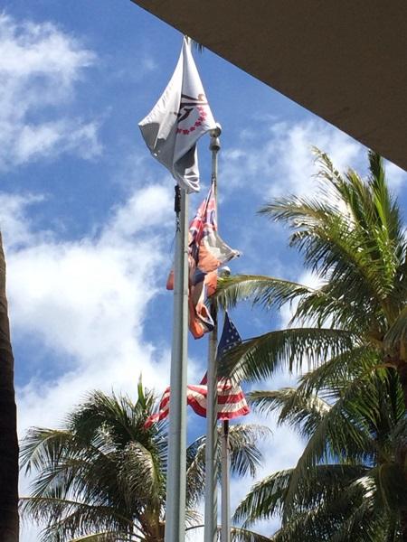 arashi hawaii1