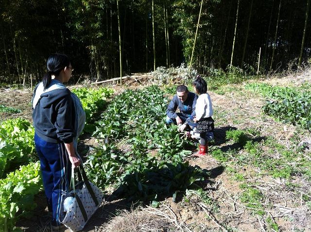 収穫と支温