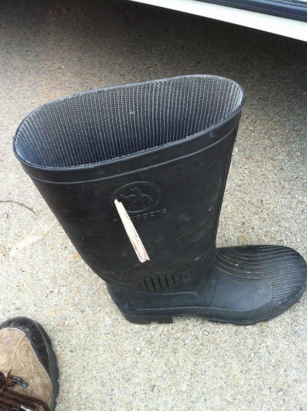boots-ana03