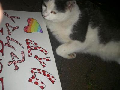 夜のひとりレインボーパレード2 猫