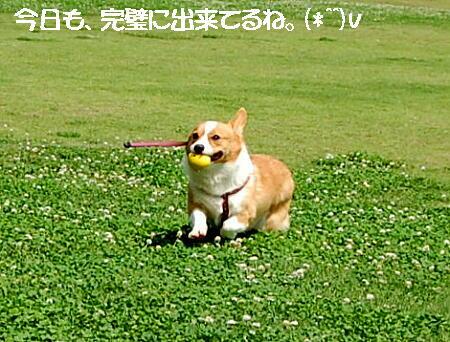 2013062608.jpg