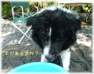セト2歳誕生日2012.7.30 2