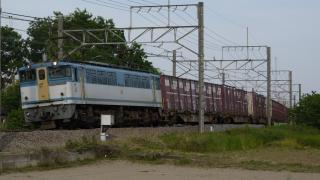 P1160552-1920.jpg