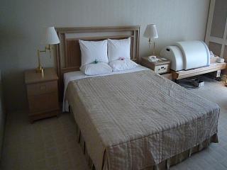 岩盤ベッド