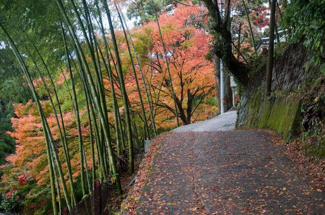 西山興隆寺07