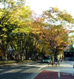 仙台・定禅寺通り