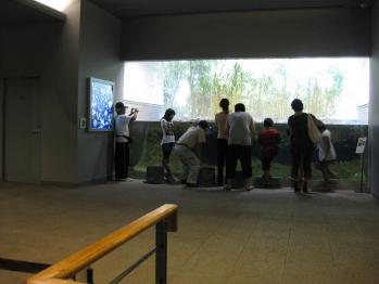 琵琶湖博物館 011