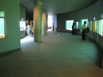 琵琶湖博物館 010