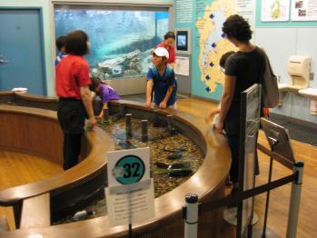 琵琶湖博物館 014