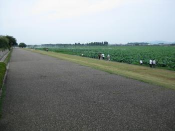 琵琶湖博物館 021