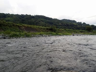 酒匂川様子2014092
