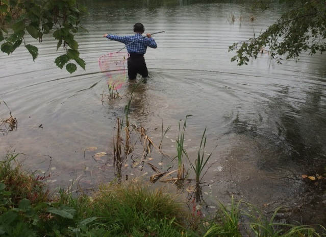 池へ20141015