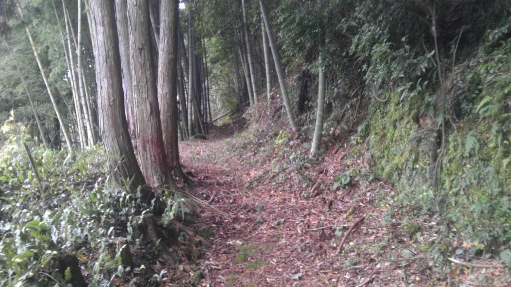 tsushima02.jpg