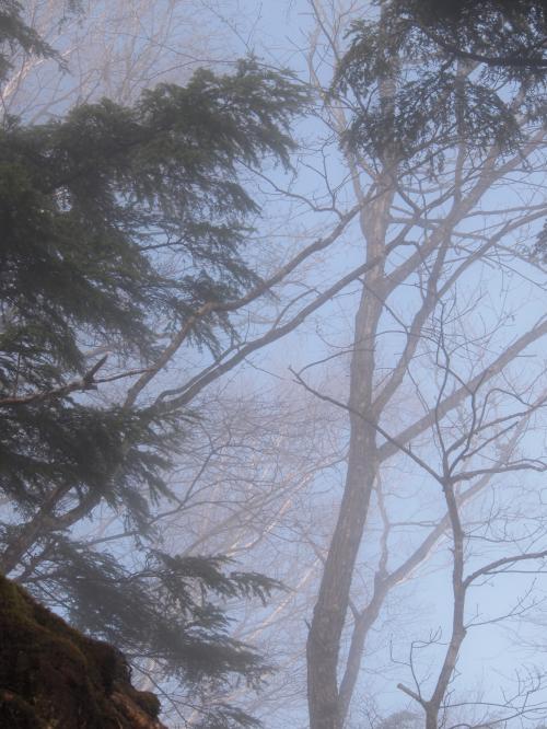 2012年 4月21日 長沢背稜  11