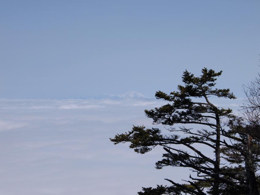 2012年 4月21日 長沢背稜  14