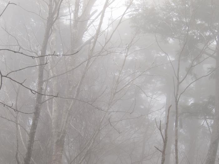 2012年 4月21日 長沢背稜  44