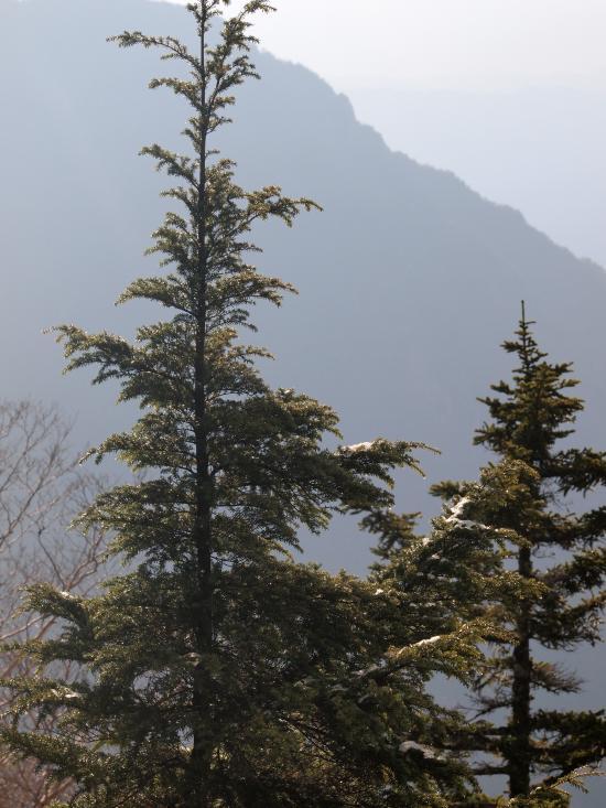 2012年 5月5日 北アルプス燕岳 4