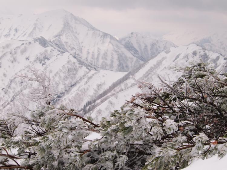 2012年 5月5日 北アルプス燕岳 21
