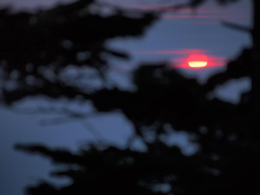 2012  5 20  甲武信岳 5
