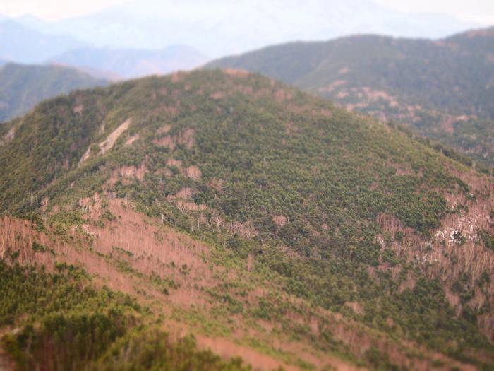 2012  5 20  甲武信岳 10