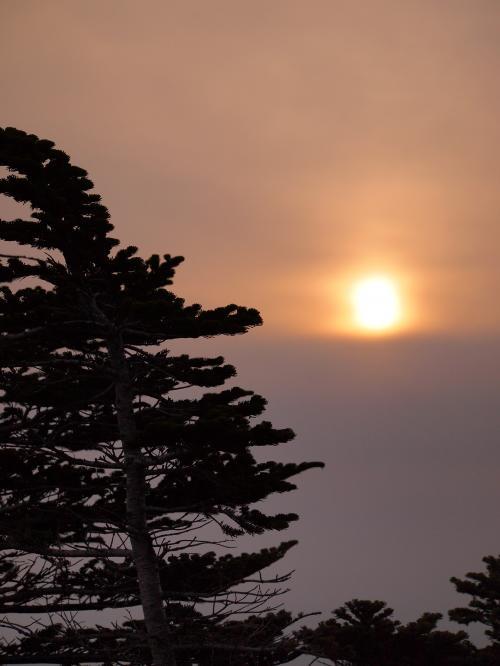 2012  5 20  甲武信岳 20
