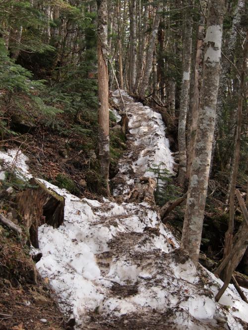 2012  5 20  甲武信岳 32