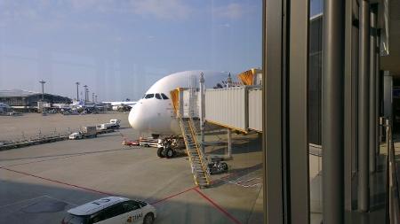 成田空港 タイ航空A380画像