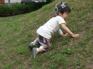PIC_0768_convert_20120719134428.jpg