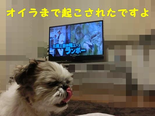 2014-12-11-007.jpg