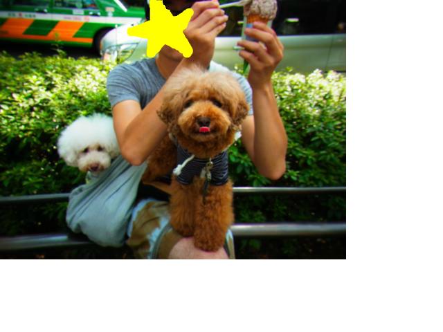 snap_sunmon935_2012104133757.jpg