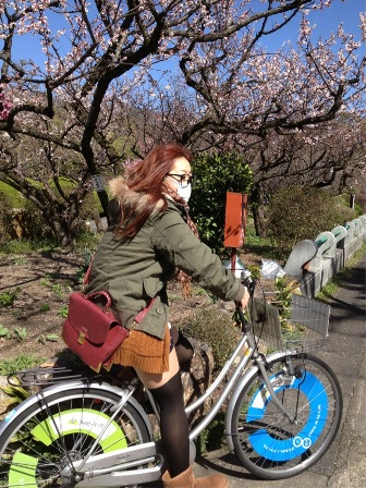 梅 自転車