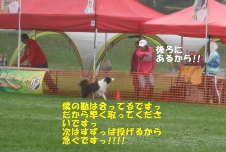 IMG_5882 - コピー (3)