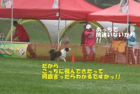 IMG_5882 - コピー (2)