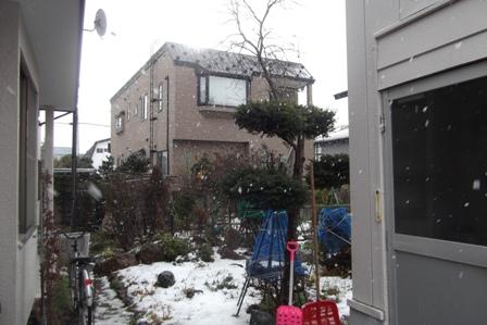 雪の舞う庭