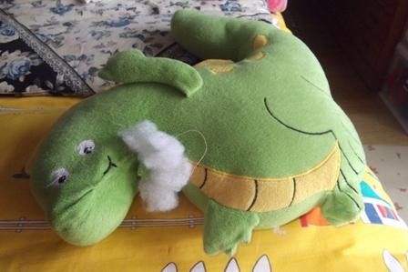 ずっと一緒だったお友達の恐竜さん