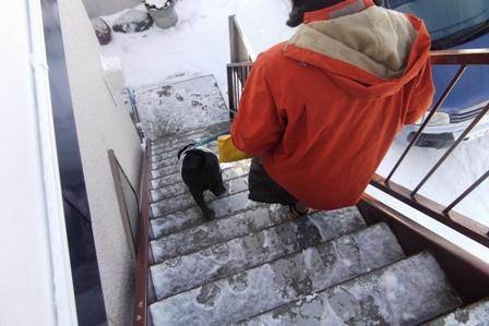 2階の玄関から降りる我が家の外階段はこんな感じ