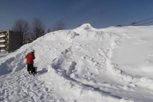 雪山を登ろうと…